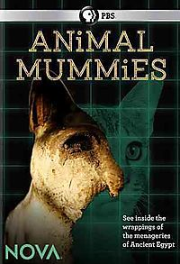 NOVA: Animal Mummies